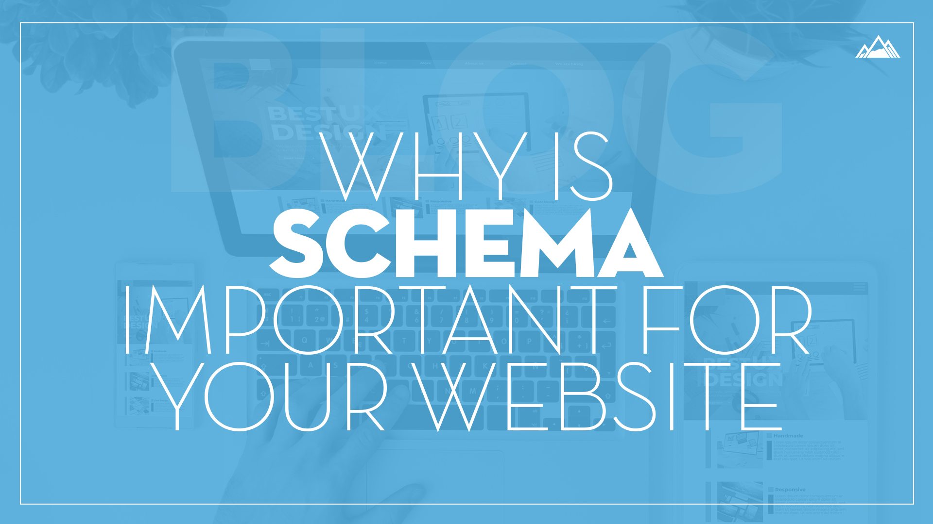 Why Is Schema Important for Your Website?