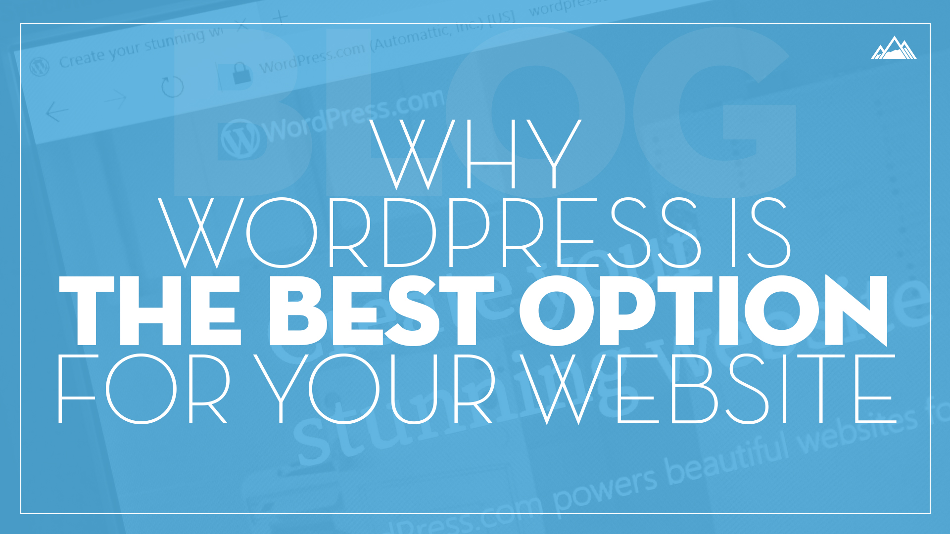 Why WordPress Is the Best Option for Your Website